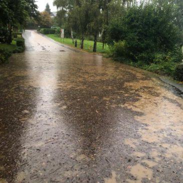 Reinigung der Sinkkästen (Regeneinläufe)